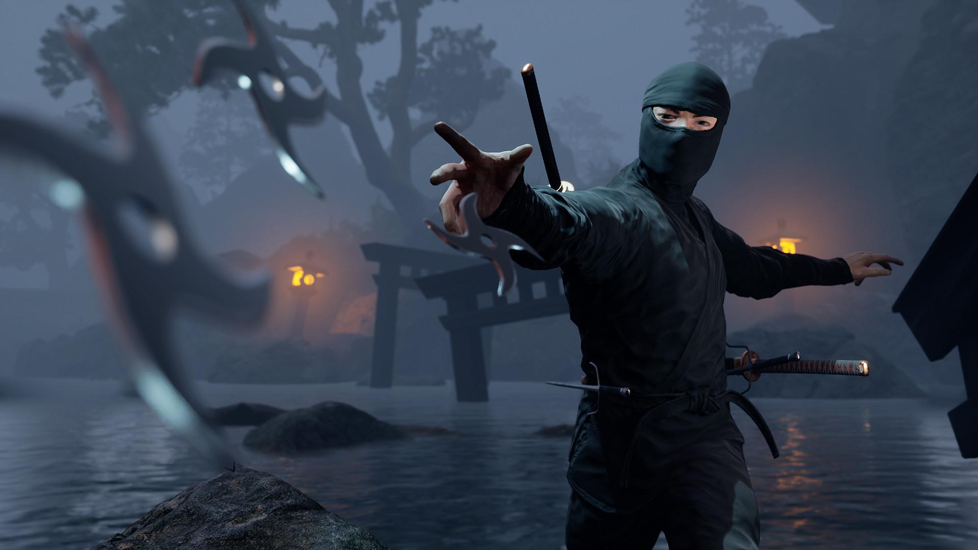 Постер Ninja Simulator