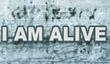 Постер I Am Alive
