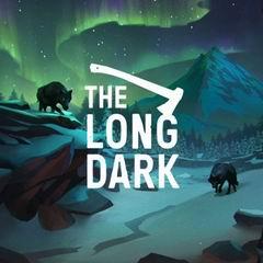 Постер The Long Dark