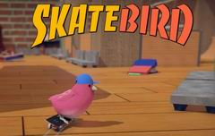 Постер SkateBIRD