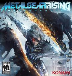 Постер Metal Gear Rising: Revengeance