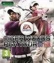 Постер Tiger Woods PGA Tour 2013