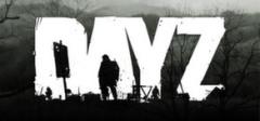 Постер DayZ